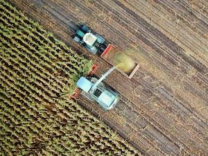 El DOE publica el decreto sobre concesión de incentivos agroindustriales para el desarrollo de productos agrículas